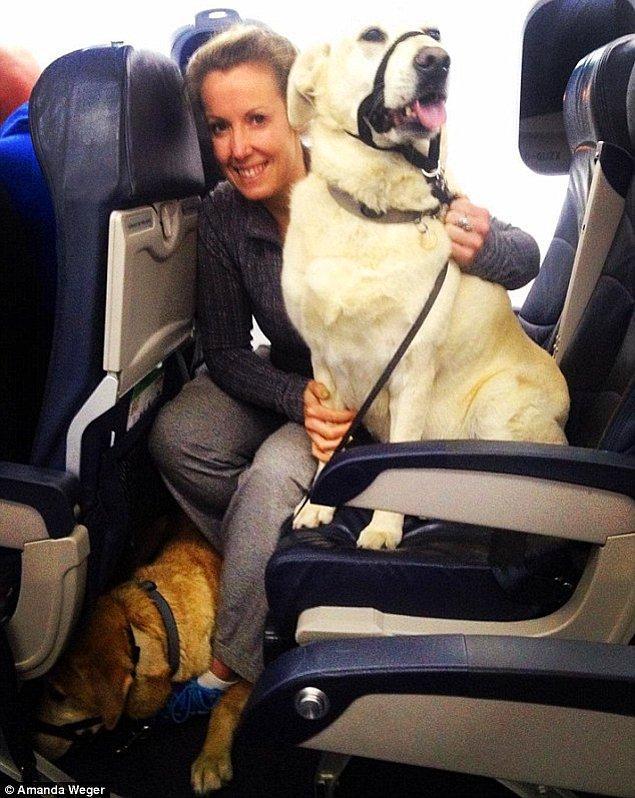 Zumba eğitmeni Amanda Wager, köpekleri Tucker ve Bailey ile oturma düzenine alışmaya çalışırken çektiği bir fotoğrafı paylaştı.