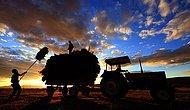 Üretim Liderliğinden İthalat Liderliğine: 'Tarım Ülkesi' Türkiye