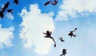 Gökten kurbağa yağdı - Video