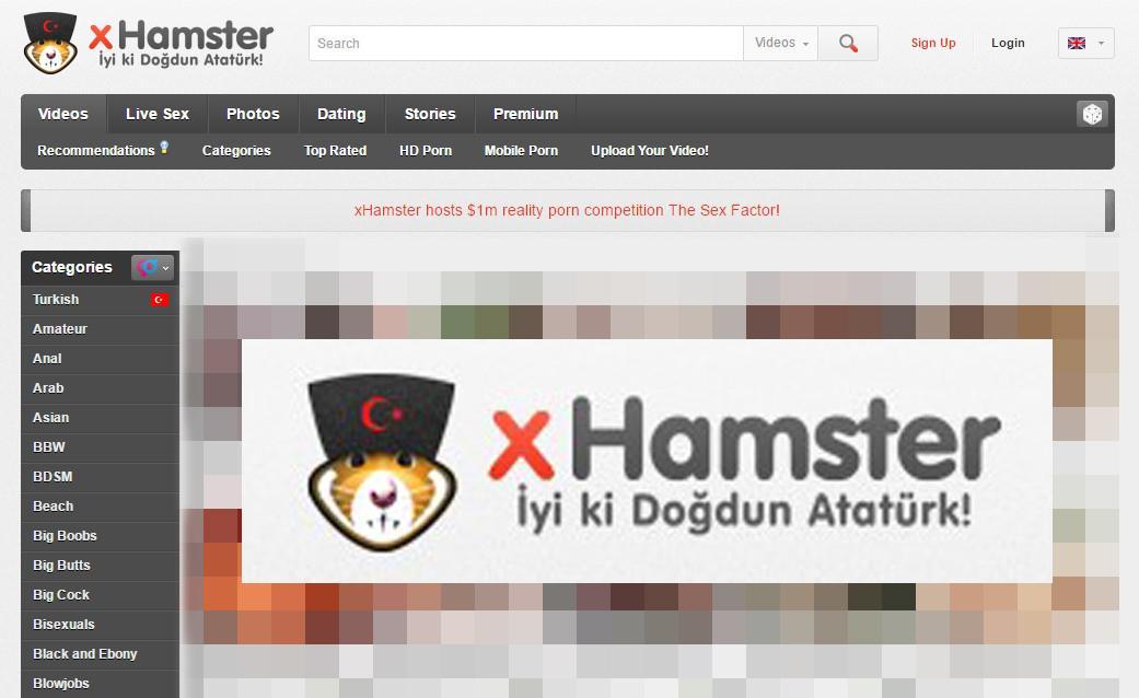 türk porno hamster