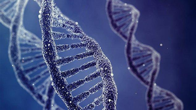 5. Virüs genleri DNA'mızda bulunuyor!