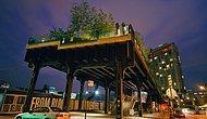 Bir İleri Görüşlülük Eseri! Manhattan'ın Üzerindeki Botanik Parkı 'The High Line'