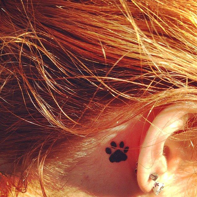 14. Tatlı kedinizin patileri yanıbaşınızda olacak.