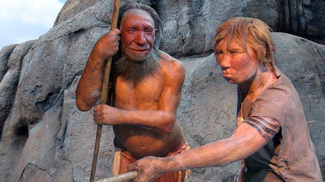 Neandertal'lerin bilişsel yeteneklerine dair bulgular var, fakat yerleşim kurma yeteneklerine dair bir kanıt yok.