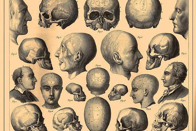 12. İnsanlar yüzyıllar boyunca şiddet eğilimini tespit etmek için çeşitli yöntemler kullanmıştır. Örneğin 19. yüzyıla ait bir bilim dalı olan frenoloji, bir insanın suça ve şiddete olan eğiliminin kafatası şeklinden anlaşılabileceğini öngörmüştür.