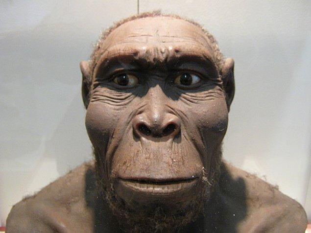 15. Kişilerarası şiddetin homo türünün eski dönemlerine kadar uzandığı biliniyor. Ulaşılan kanıtlara göre bilinen en eski cinayet, 400,000 yıl kadar öncesine dayanıyor.