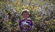 Türkiye'de Son 3,5 Yılda 194 Çocuk İşçi Can Verdi