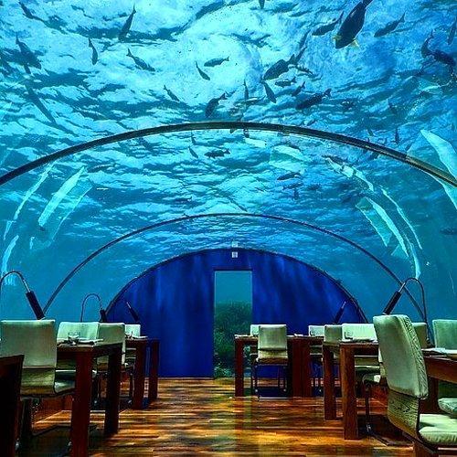Ithaa Yeraltı Restoranı | Rangali Adası, Maldivler.