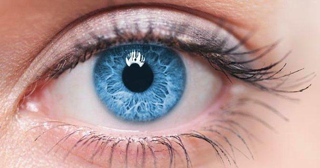"""6. """"Göz"""" sözcüğü, Eski Türkçedeki """"gö""""den türemiştir. """"Gö""""nün anlamı """"yuvarlak""""tır ve """"göz, göl, gök ve hatta göt"""" sözcükleri aynı köke dayanır."""