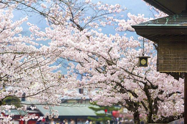 3. Japon bahçelerine doya doya bakacağınız Kyoto