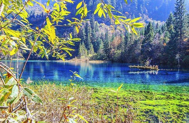 11. Gözlerinizi kamaştıracak bir doğa harikası Jiuzhaigou Vadisi Milli Parkı