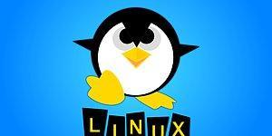 Özgürlüğe ve Özgür Yazılıma Destek: 18 Maddeyle Neden Windows Yerine Linux Kullanmalıyız