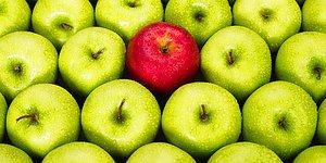 Öğrenmeye Aç Bünyeleri Uzun Süreliğine Tatmin Edecek 23 Ufuk Açıcı Bilgi