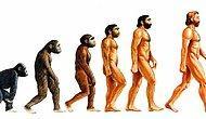 8 Madde ile Evrimsel Biyoloji'de Yanlış Bilinenler Üzerine