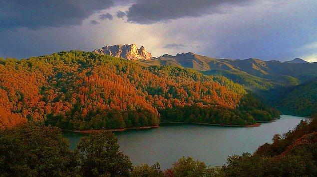 10. Azerbaycan'ın Tovuz ve Goygol şehirlerinin temelini Almanlar oluşturmuştur. Daha önce onların adı ise Traubenfeld ve Yelenendorf'du