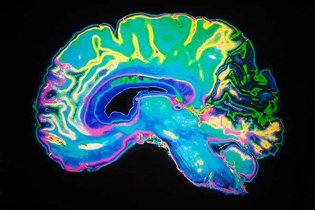 Beynin 12 bölgesinin, 0.2 saniyelik görsel temaslarla, aşk duygusunu tetikleyen birçok kimyasal ve hormonu serbest bırakmak için birlikte çalıştığı keşfedilmiş.