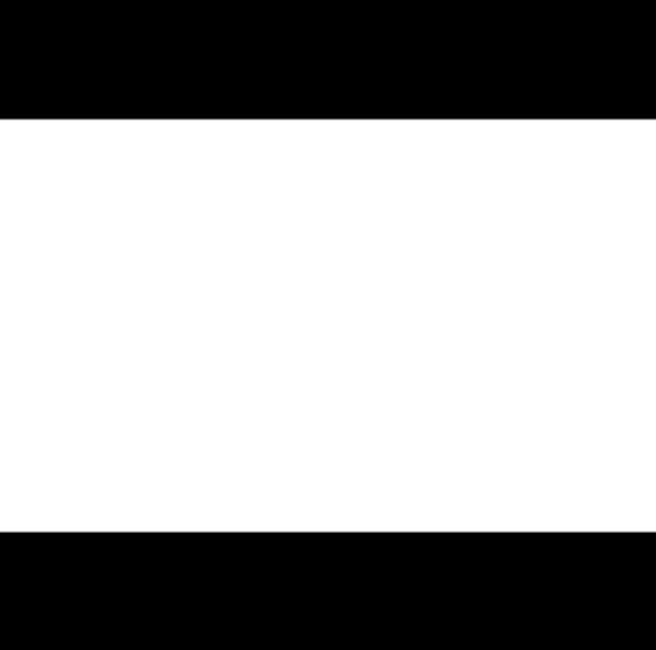 Turgut Taş