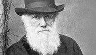 Evrimi Daha İyi Kavramak İçin Okumanız Gereken Kitaplar