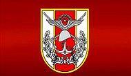 Askeri Birimleri Daha İyi Anlamak İçin Özetle TSK'nın Genel Yapılanması