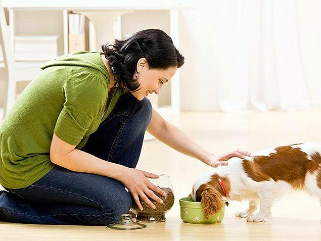 3. Yiyecek, su kapları ve oyuncaklar, bebek geldikten sonraki kullanım için uygun bir alana taşınmalıdır