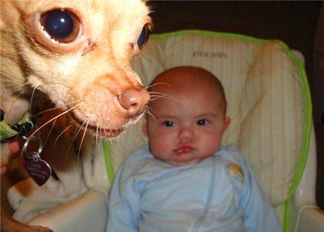 """5. """"Bebek elimizde! Parayı hemen getirmezsen suratını yalarım ona göre!"""""""
