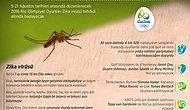 Zika Korkusu Altında Olimpiyat Oyunları