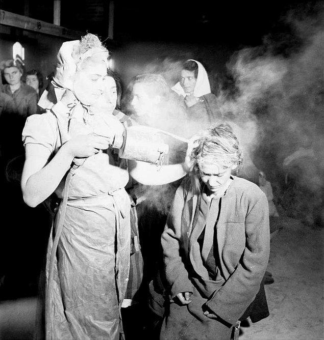 18. Bergen-Belsen toplama kampından yeni kurtarılmış kadın mahkumlara tifüs yayan bitleri öldürmek için DDT tozu serpilirlen. Mayıs, 1945.