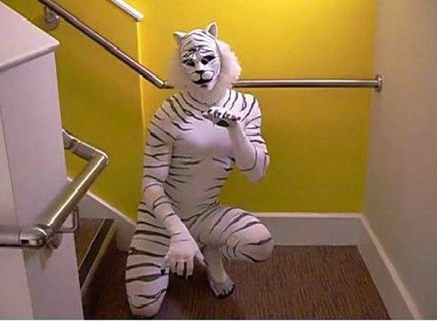 8. Cats müzikalinin kapısından çevirilen bahtsız insan.