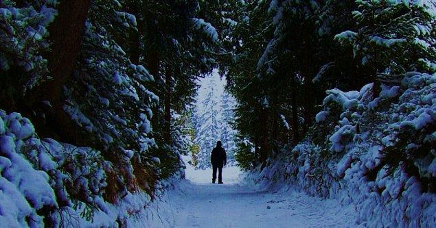 12. Narnia - Narnia Günlükleri