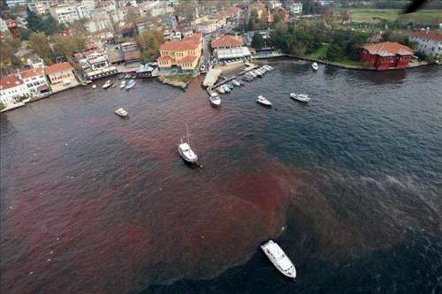 2. Zaten oldukça yıpranmış olan doğayı da daha fazla yıpratmamak ve bu sayede hastalıklardan korunmak mümkün...