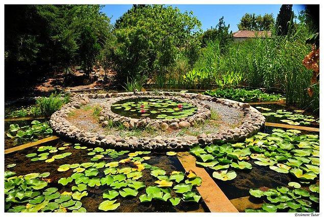 18. Ege Üniversitesi Botanik Bahçesi'ni görün