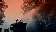 Antalya'da 10 Yılda 24 Bin Hektar Ormanlık Alan Kül Oldu