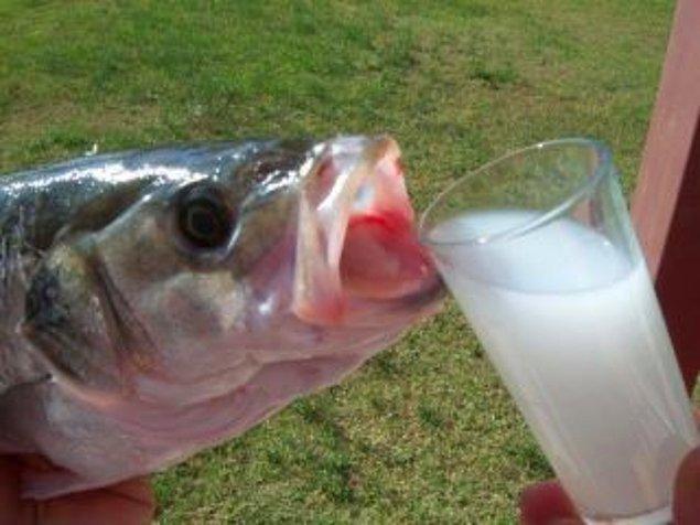 """8. """"Vay kardeşim benim be! Bi gün mutlaka rakı balık yapalım!"""""""