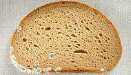 Muhtemelen Pek Çoğumuzun Yaptığı Bir Davranış Olan Küflü Ekmek Yemek Zararlı mı?