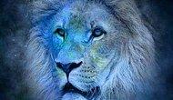 Koç, Aslan, Yay ve Diğerleri: Burç İsimlerinin Nereden Geldiğine Dair 12 Mitolojik Öykü