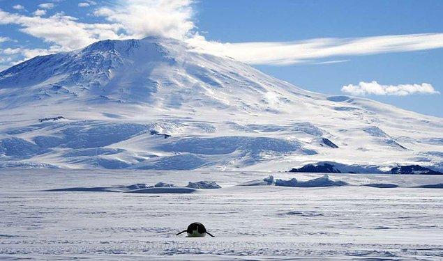 2. Dünyamızda bulunan en büyük çöl Sahra değildir. Kuru ve yerleşim imkânı bulunmayan ortamlara verilen çöl ismine göre en büyük çölümüz Antarktika'dır.