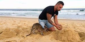 En İyi Arkadaşı Bebek Kanguru Olan Dünyanın En Sevimli Adamı