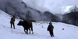 Türkiye'nin Oscar Adayı Belli Oldu: 'Kalandar Soğuğu'