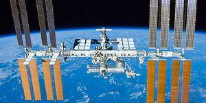 Uluslararası Uzay İstasyonu'nda Bir İlk: NASA, Uydularında Yetiştirmeyi Planladıkları Meyveyi Açıkladı