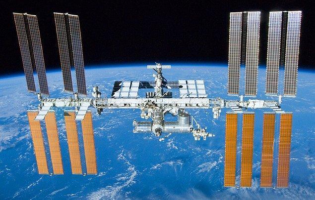 Şu an Uluslararası Uzay İstasyonunda; marul, pazı, turp, çin lahanası ve bezelye olmak üzere birçok sebze yetiştiriliyor.