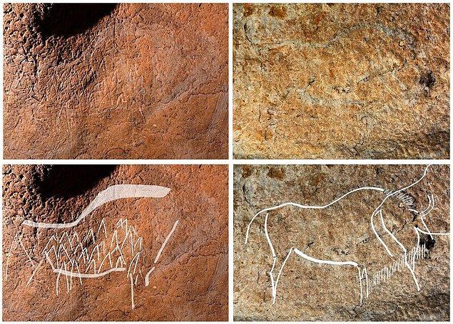 Mağara, hem resimleri koruyabilmek hem de çizimlerin bulunduğu bölgeye erişimin zor olması nedeniyle, halka açık olmayacak.