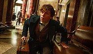Harry Potter Hayranlarına Müjde: 5 Yeni Film Geliyor