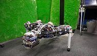 Nizami Bir Şekilde Şınav Çeken Delikanlı Robot: Kengoro