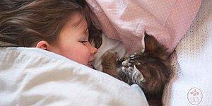 5 Yaşındaki Otizmli Küçük Iris ve En Büyük Destekçisi Terapötik Kedi Thula