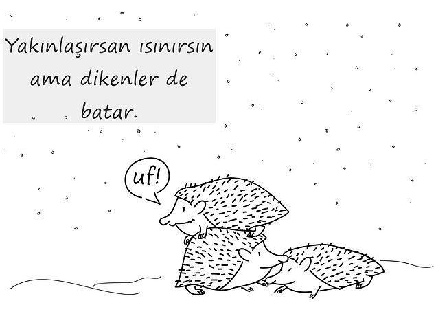 ''Soğuk bir kış sabahı çok sayıda kirpi, donmamak için birbirine bir hayli yaklaştı.''