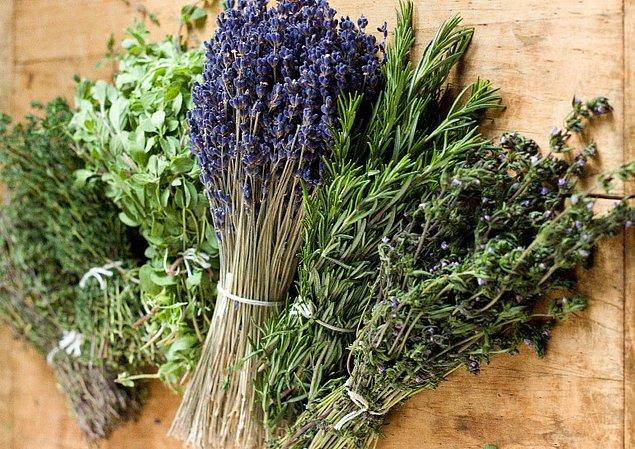 1. Herbes de Provence (Fransa) ile başlayalım; yani Provansa'nın mis kokan taze otlarıyla!