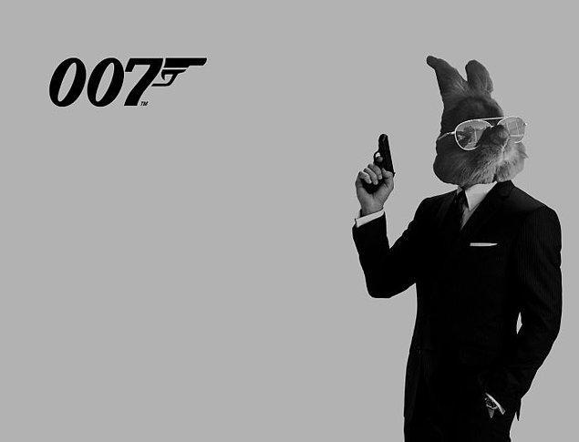 16. Adım Bond. Tavşan Bond.