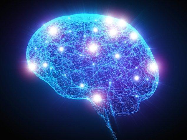 Erkeklik hormonu Testesteron, sağ beyin lob'unun büyümesini hızlandırıyor ve bu da hareket ve etkinliğe duyulan bir ilgi olarak çıktı veriyor.