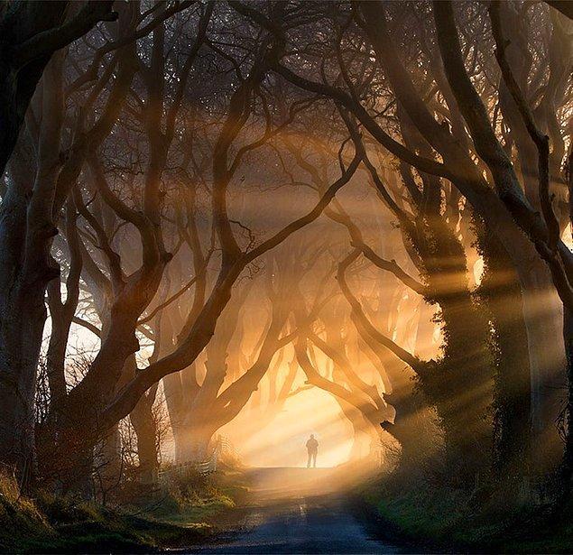 24. Stranocum, İrlanda