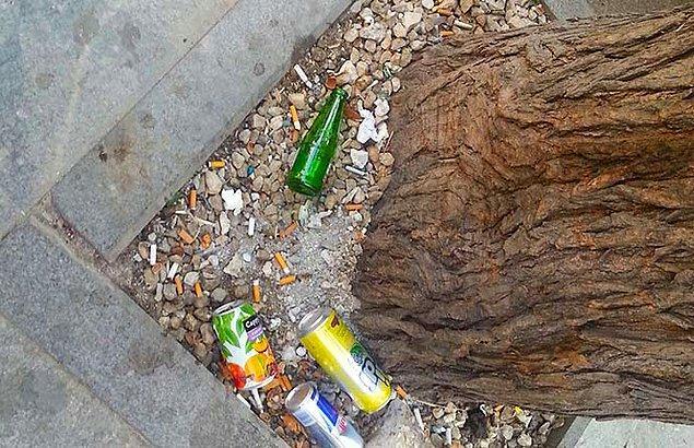 2. Ağaç kovuğu göremeyenlerin çöplük gibi kullandıkları ağaç dipleri.
